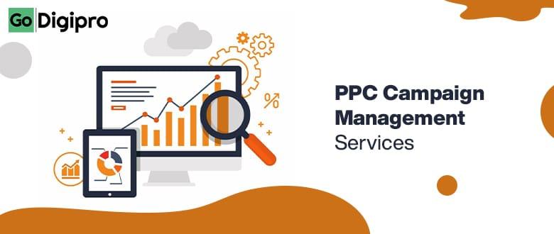 PPC campaign management services in delhi